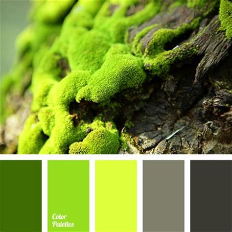 colors that go with lime green bright lime color color of greens dark green color dark