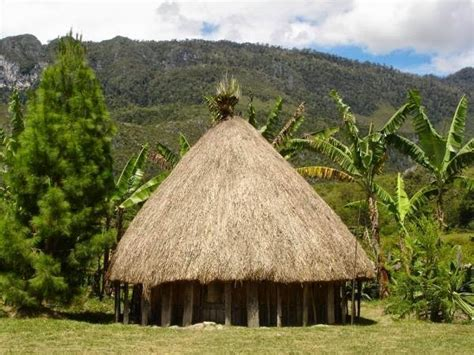 rumah adat 33 provinsi di indonesia spirit guru