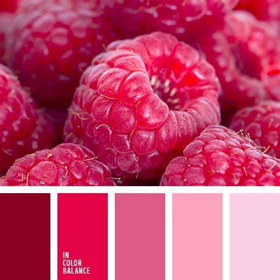 matching colours with pink 25 best pink color schemes ideas on color