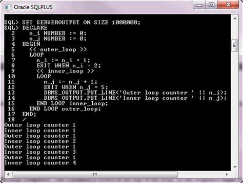 tutorial on oracle pl sql pl sql loop statement