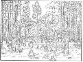 Detailed Landscape Coloring Pages For Gap 1 Jpg 1083 215 820 Landscape Coloring Pages