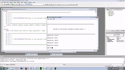 Mumps Programmer by Mumps Database Application