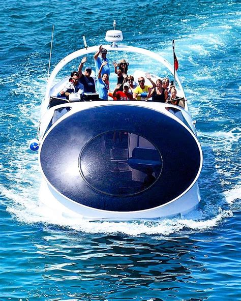 glass bottom boat dolphin tours dolphin watching and coastline tour from albufeira in a