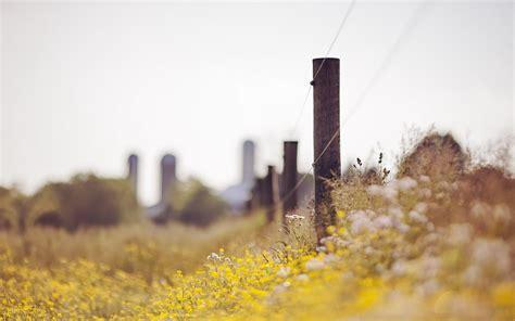 flowers field fence landscape hd desktop wallpapers  hd