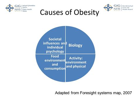 10 Causes Of Obesity by Obesity Reduction Angela Jones Consultant In Health