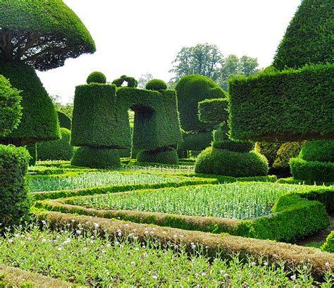 Stunning beauty of levens hall garden uk 9 pics i like to waste my time