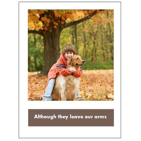 free pet card templates 5 free pet sympathy cards for microsoft publisher