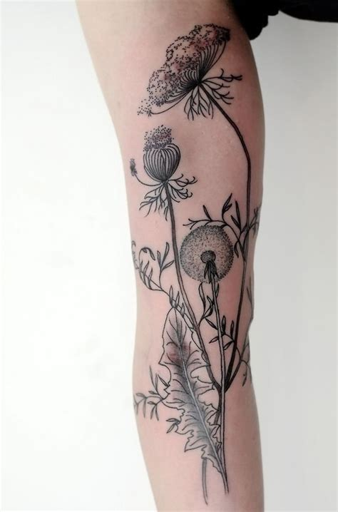tattoo parlors queen anne 45 dandelion tattoo designs for women queen anne lace