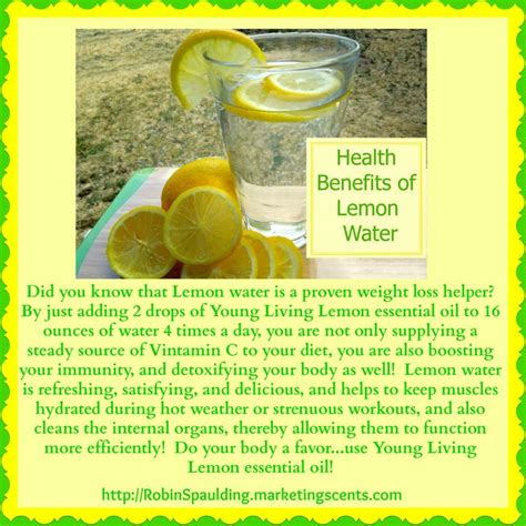Detox Lose Weight Water by 62 Best Images About Living Essential Oils On