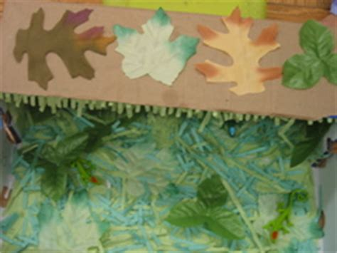 Parent Letter For Diorama Look Again Camouflage Dioramas