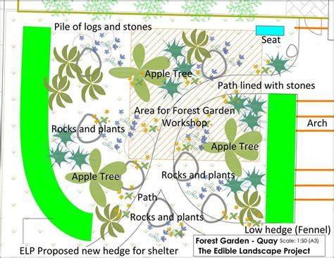 forest nursery layout plan 2016 2015 2014 forest gardening edible landscape project