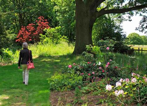formal and informal gardens doddington gardens lincolnshire