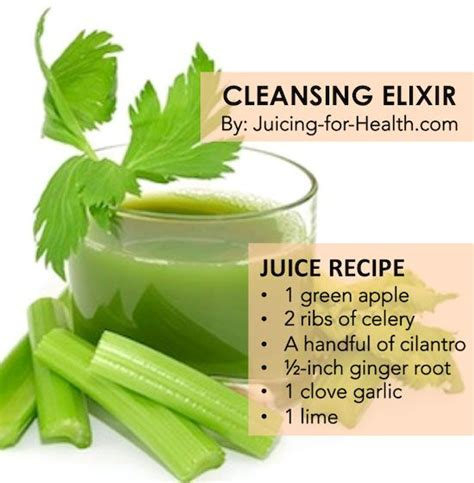 Juice Detox Diet Benefits by Best 25 Cilantro Benefits Ideas On Cilantro
