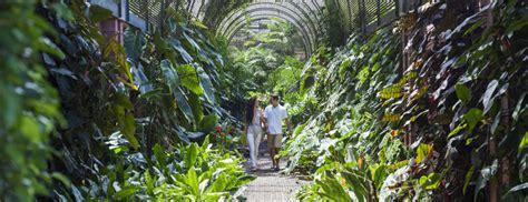 jardines tenerife jard 205 n bot 193 nico jardines y parques tenerife