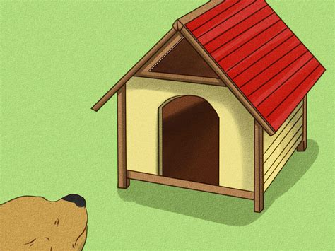 cheap insulated dog houses build your own insulated dog house