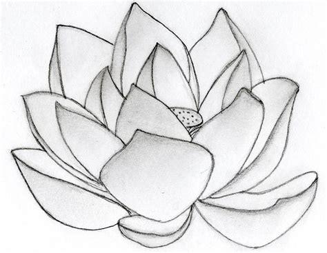 lotus pattern drawing lotus flower art flower hd wallpapers images pictures