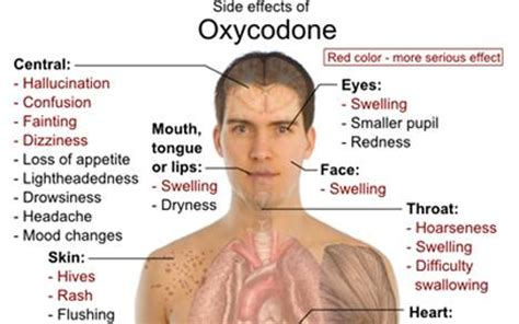 Detox Percocet Symptoms by How Does Oxycodone Stay In Your Urine Facts