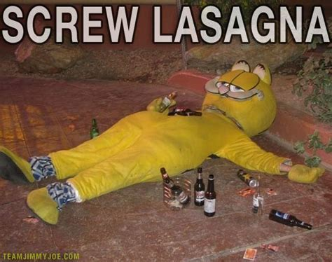 Lasagna Meme - lasagna cat garfield memes