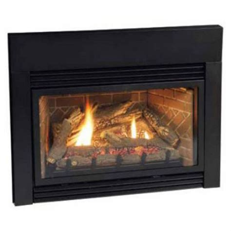 empire gas fireplaces empire direct vent fireplace insert dv25in73ln