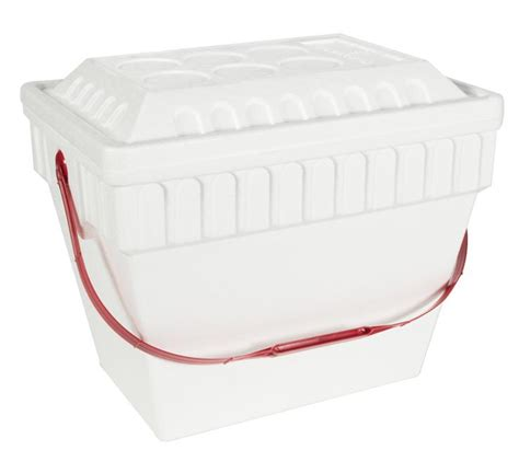 Harga Cooler Box Styrofoam by Styrofoam Cooler 24 Can With Handle Sportsman S Warehouse