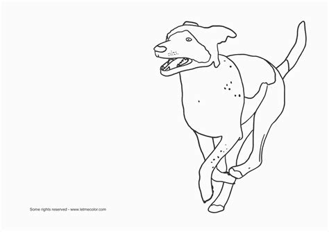 dog running coloring page dog running drawing coloring pages