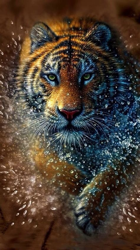 Wild Tiger Wallpapers Gallery (83 Plus)   juegosrev.com