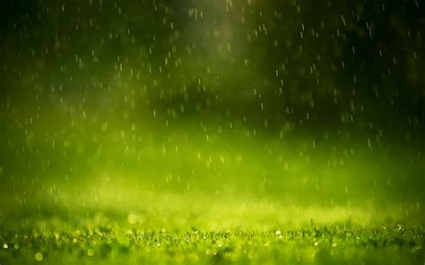 Rain Drops Wallpapers   HD Wallpapers