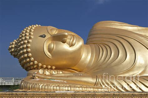 giant reclining buddha giant reclining buddha print by roberto morgenthaler