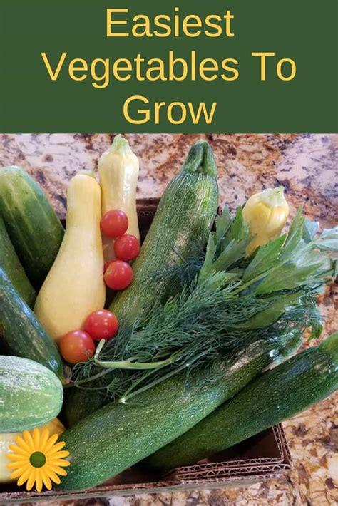 Easy Vegetable Gardening For Beginners Easiest Garden Vegetables To Grow