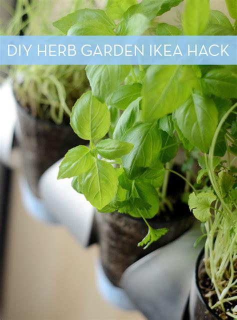 how to make an indoor herb garden how to indoor herb garden ikea hack 187 curbly diy design