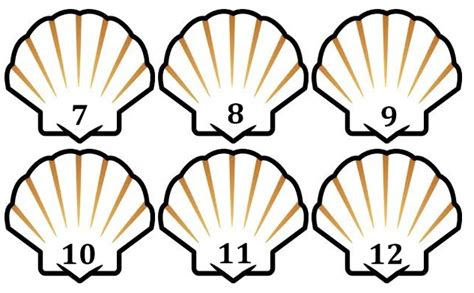bash pattern matching numbers michelles charm world sea shell count and match