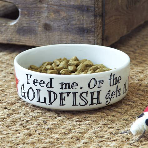care for goldfish in ceramic bowls feed me or the goldfish gets it cat bowl by sweet