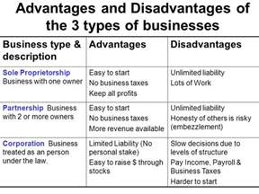 types of business types of business organizations ppt