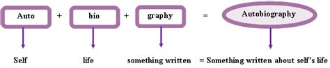 autobiography meaning in english autobiography definition and how to write english