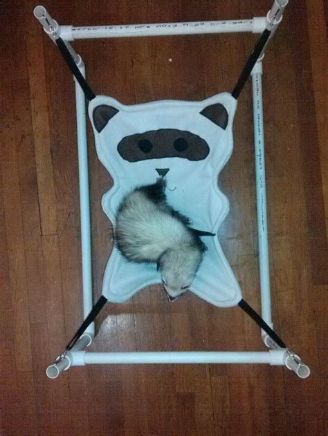 ferret beds and hammocks 17 best images about pets feisty ferrets on pinterest