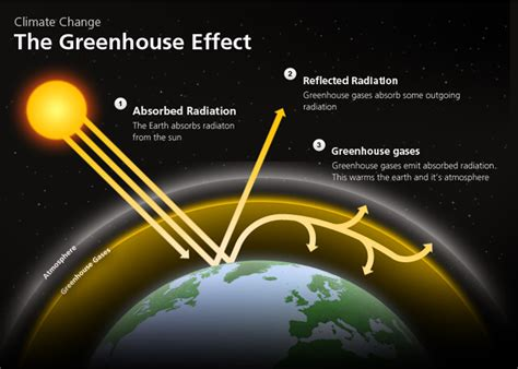 green house effect the green house effect