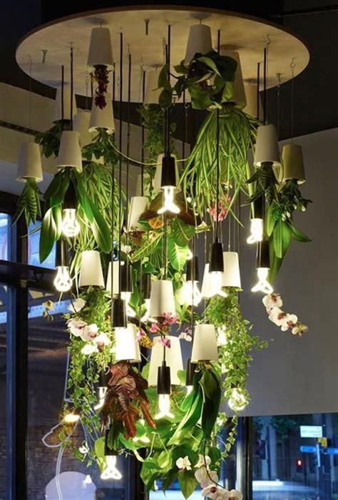 decorar los interiores con plantas decoraci 243 n con plantas de interior