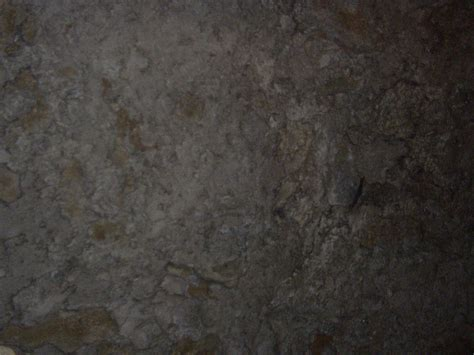 mammoth cave texture  myfolio