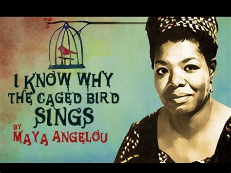singing and swinging maya angelou i know why she sings urban cusp