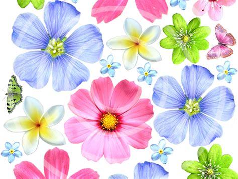 Edible Wafer Paper edible wafer paper flowers felt