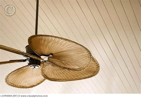 beach themed ceiling fans 14 best images about ceiling fans on pinterest ceiling