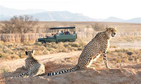 12 day classic south africa gate 1 travel south africa tour with hotel and air from gate 1 travel in