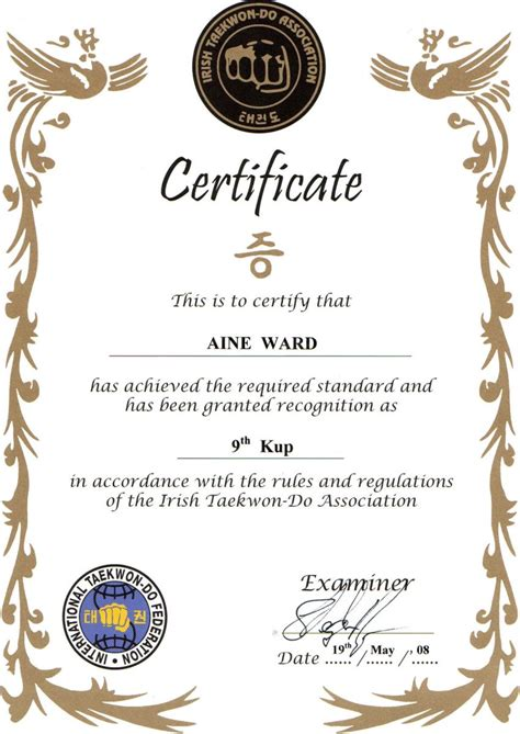 ITA Examiners   Irish Taekwon Do Association