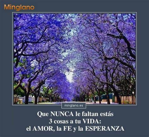 Imagenes Con Frases De Animo 3 | frases para dar 193 nimo con im 193 genes