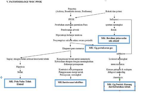 format asuhan keperawatan gawat darurat pdf nurse and revery laporan pendahuluan penyakit paru