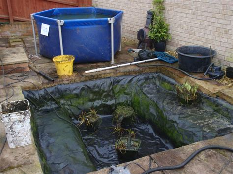 clean backyard pond garden pond cleaning a beginner s guide garden pond