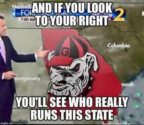 Georgia Bulldog Memes - 304 best images about georgia bulldogs on pinterest