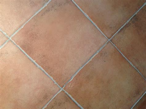 piastrelle interno pavimento effetto cotto per interno bertolani store