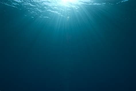into the blue underwater sounds of nature for relaxation deep underwater wallpaper wallpapersafari