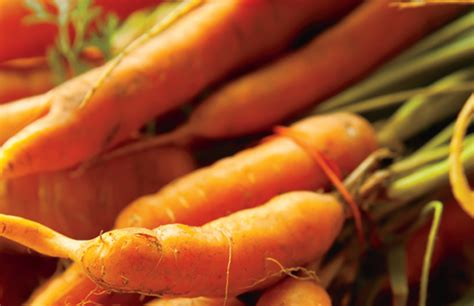 what s in season carrots farm flavor
